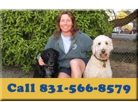 Call us at 831-566-8579